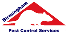 Birmingham Pest Control Service, professional pest control service for Birmingham, West Midlands and Sutton Coldfield. Wasp nest treatment or removal fixed price £45.00, contact us on  0121 450 9784 for more info.
